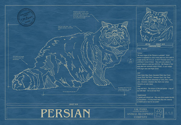 Ever wanted a blueprint of your dog or cat news circus posterus more examples malvernweather Gallery