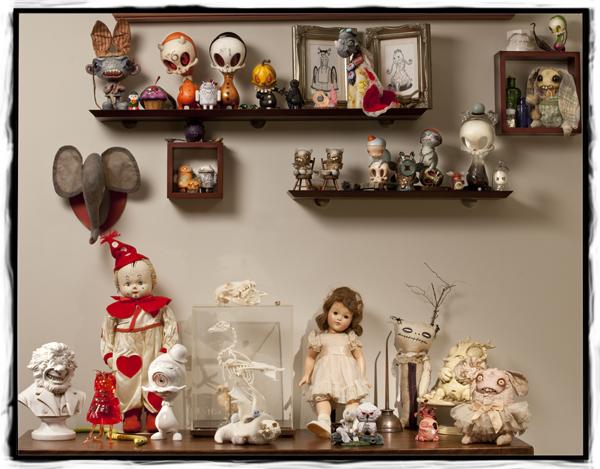 shelf_display_sjc