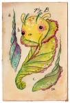 Fairybug-Cocoon-Fig-B