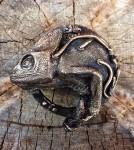 webb_s_chameleonbuckle