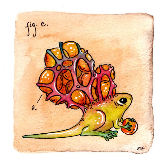 40.fige_hivebasketfrog