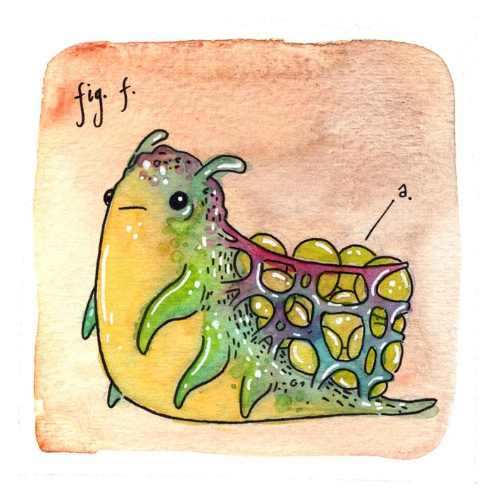 41.figf