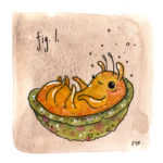47.figl_shelledhiderbug