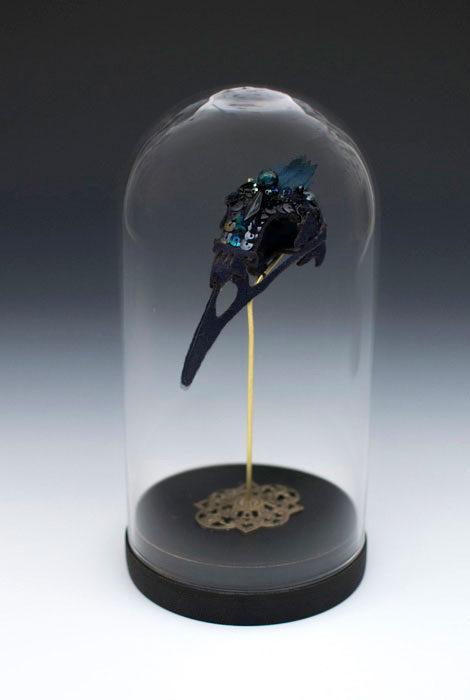 LC-Iris-Raven
