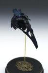 LC-Iris Raven2