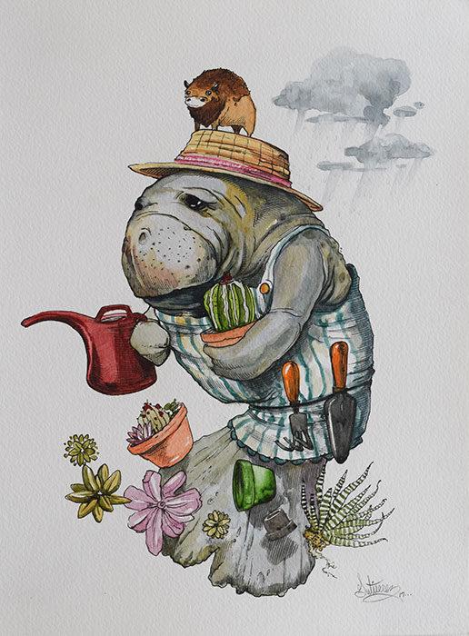 The-Succulent-Gardener